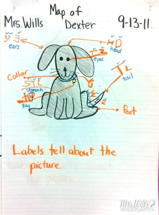Writers Workshop Labeling the Picture. Using a mentor text to label, we spent several days looking at how writers label their pictures.