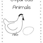 Lesson Plans for Next Week Oviparous Animals…Some Freebies!