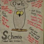 Owl-Mazing Week