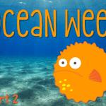Ocean Week: Part Two