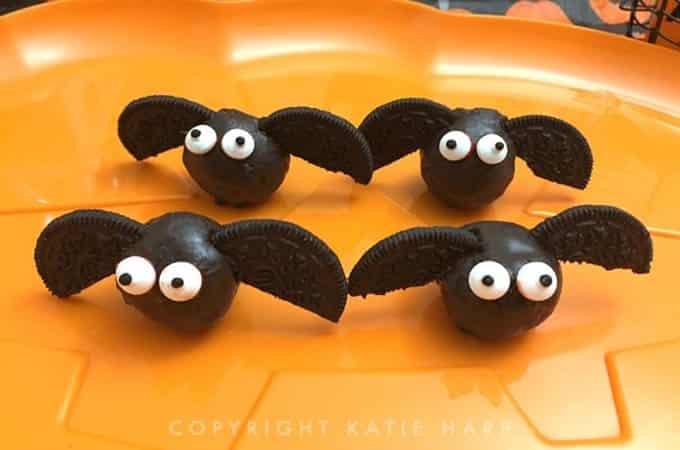 Fun Bat Lesson Plan Ideas for Kindergarten and First Grade 2