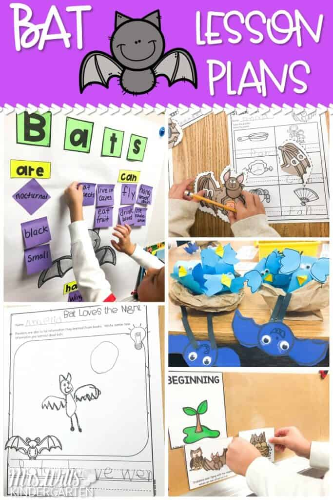 Bat lesson plan ideas with engaging activities to support reading comprehension. Math & literacy centers, crafts, videos, and yummy snacks, too! #batlessonplanideas #stellaluna #batlovesthenight #batlessonplans