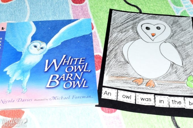 Here are some great ideas for owl kindergarten lesson plans! White Owl, Barn Owl by Nicola Davies is the read aloud text for the week. Fun owl directed drawing, owl craft ideas, and owl snack too!
