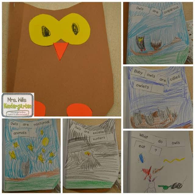 Owl Lesson Plans ~ Peek at my Week 1