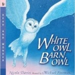 Owl Lesson Plans ~ Peek at my Week