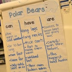 Arctic Animal Interactive Writing:  Peek at my Week