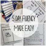 5 Day Fluency Made Easy ~ Free Sample
