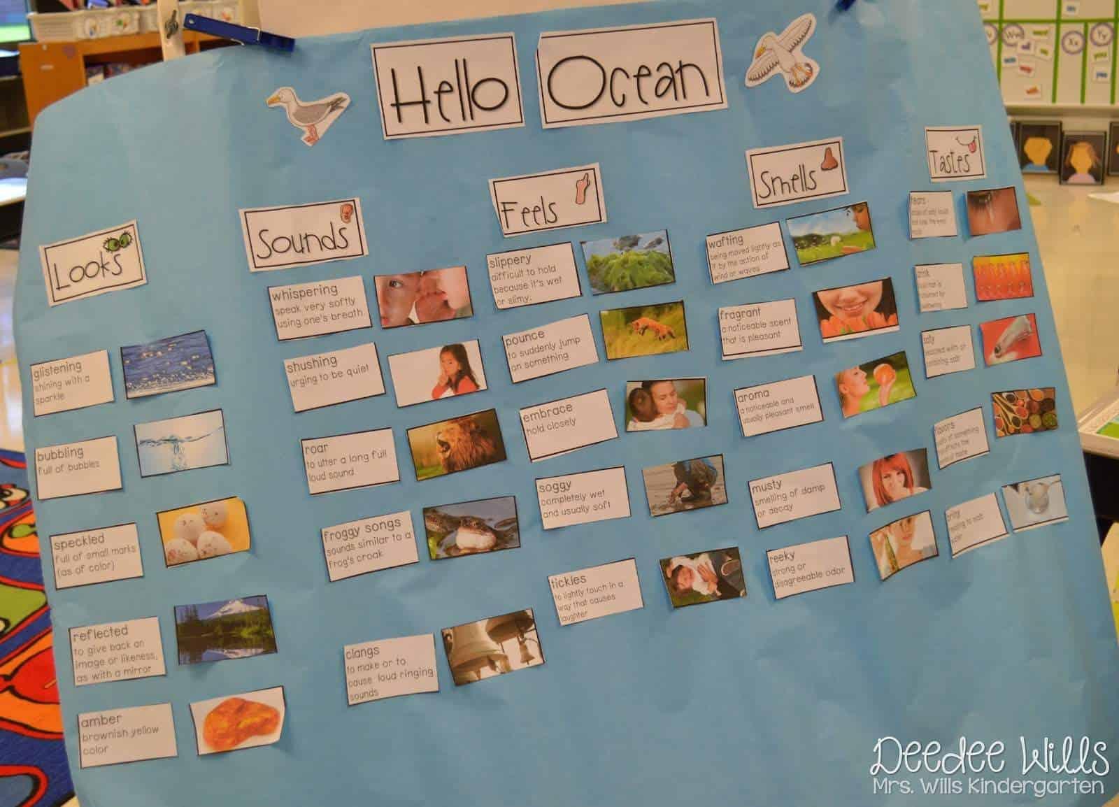 Ocean Week Lesson Plans for Kindergarten & 1st