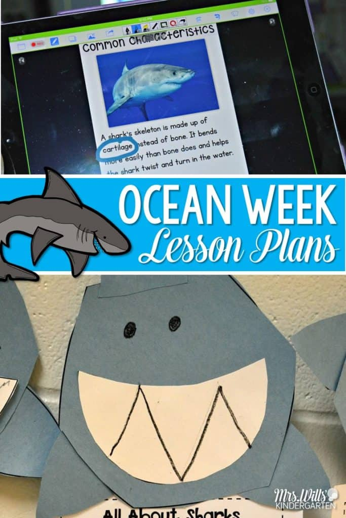 Ocean Week Lesson Plans For Kindergarten 1st