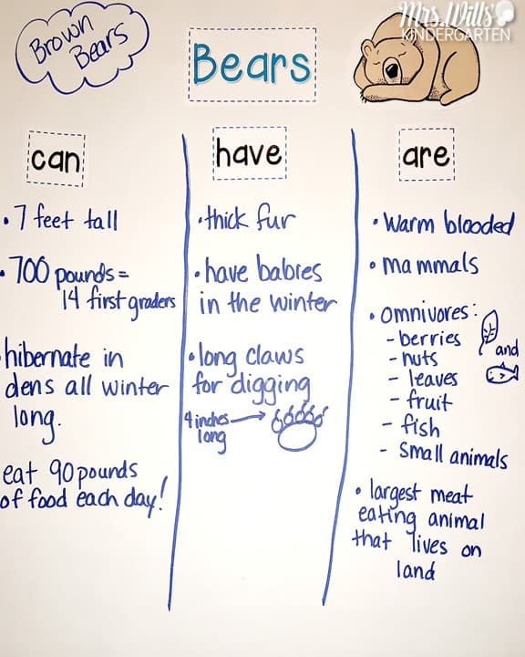 Hibernating Animals Lesson Plans! You will find ideas and lessons for teaching about animals in winter! Fun activities, reading lessons for The Bear Snores On, crafts and more! Ideas for centers that will keep your kids engaged!