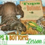 Tops and Bottoms Lesson Plans