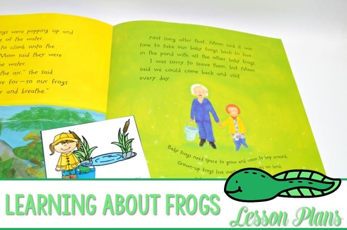 Frogs Lesson Plans! Learning about frogs in kindergarten is such a fun activity for the classroom. Reading comprehension, writing, poems, a craft, and more!