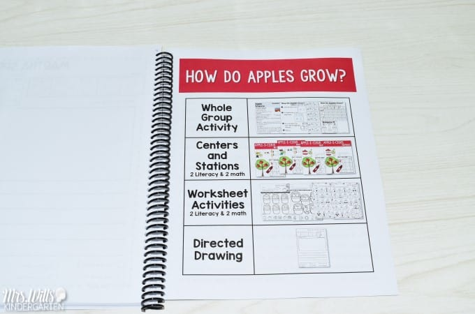 Apple Life Cycle Lesson Plan Ideas. Learning about apples in kindergarten is a tradition. This informational book about apples is packed with apple facts. See how we integrate reading, writing, science, and math! Free File included