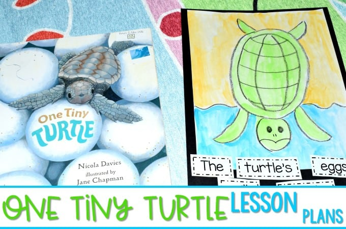 Sea Turtle Lesson Plan Ideas