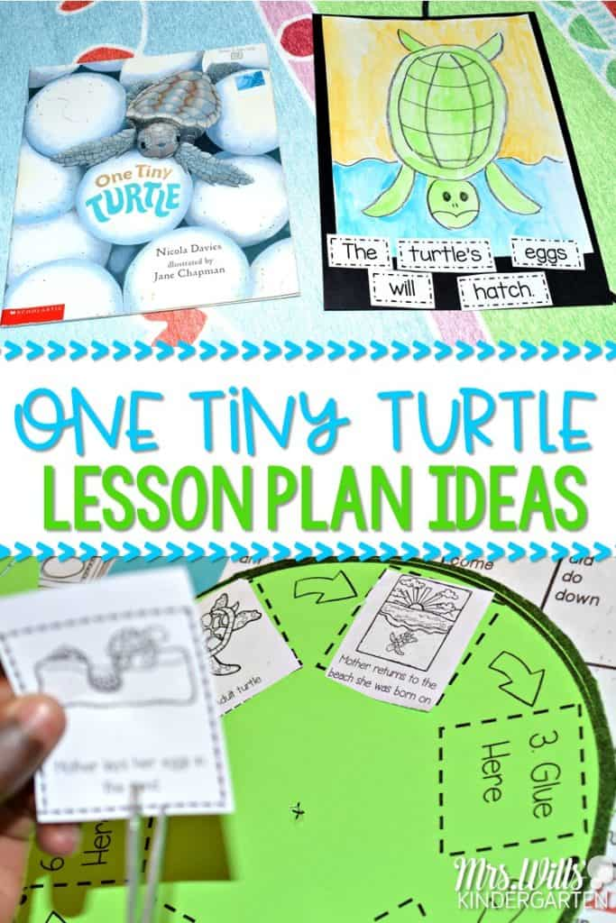 Sea turtle lesson plans for kindergarten