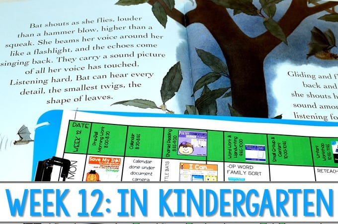 Kindergarten Lesson Plans Week 12 Bat Loves The Night Ideas For Reading Writing