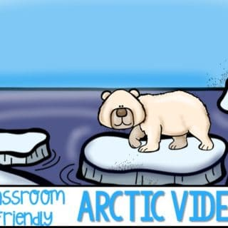 Classroom Friendly Videos Arctic Animals teacher approved great for your January units of study. Polar bears, penguins, and other animals in winter! Kindergarten and first-grade appropriate videos for your classroom.