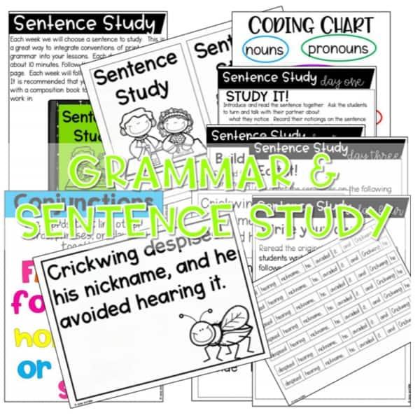 Reading Comprehension: Engaging Readers K-2 Set 3 9