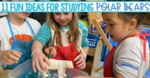 11 Fun Polar Bear Activities for Kindergarten and First Grade. Crafts, nonfiction writing, STEM, reading, centers and more. Perfect for Arctic animal unit of study.