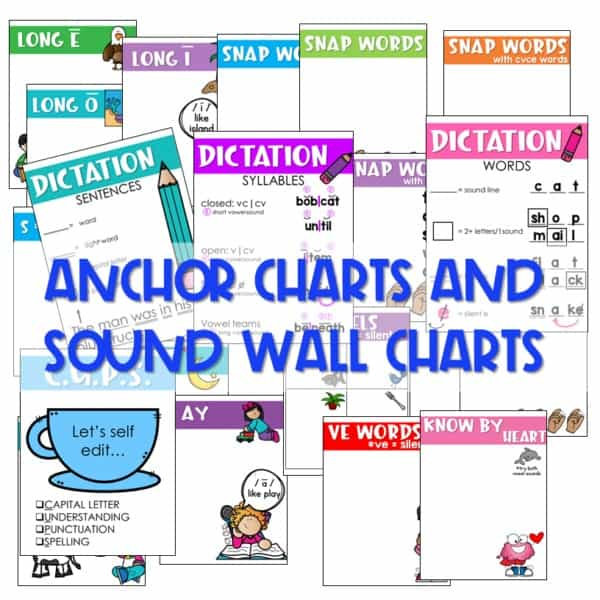 Not Your Mother's Sight Words (and Decodable Readers) 5