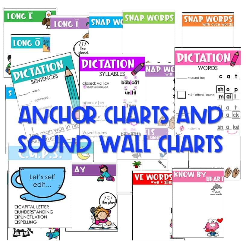 Not Your Mother's Sight Words (and Decodable Readers) 11