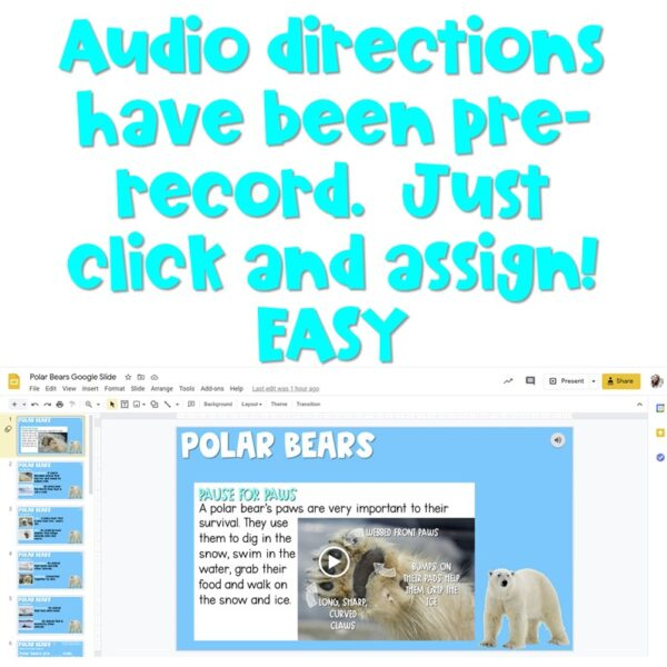 Polar Bear Unit of Study | Preloaded to Seesaw and Google Classroom 4