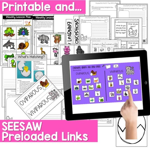 Seesaw Engaging Readers NonFiction Spring 7