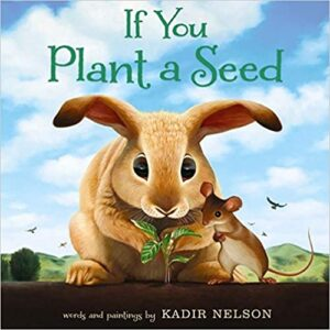 Learning About Plants in Kindergarten and 1st Grade | Plus a Free File! 25