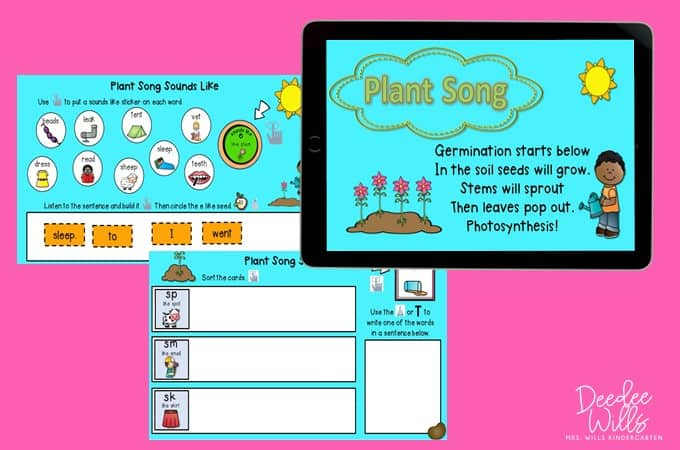 Learning About Plants in Kindergarten and 1st Grade | Plus a Free File! 28