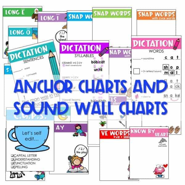 Science of Reading Based Sight Word Instruction   Kindergarten 5